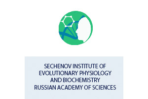 Sechenov Institute of Evolutionary Physiology and Biochemistry Russian Academy of Sciences